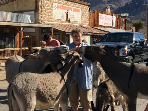 Tour Director Ramona feeding the burros