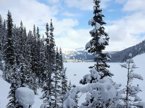 A view of Chateau Lake Louise in the winter