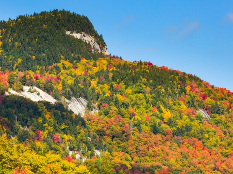 Fall colors in New England