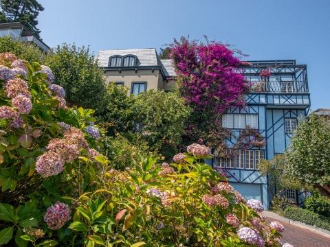 Garden in San Francisco