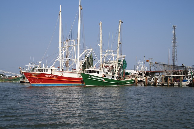 Shrimp Boats in New Orleans